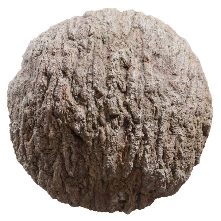 Preview render of the PBR texture Bark 02