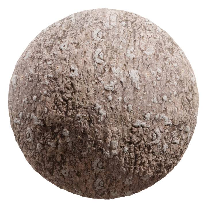 Preview render of the PBR texture Bark 05
