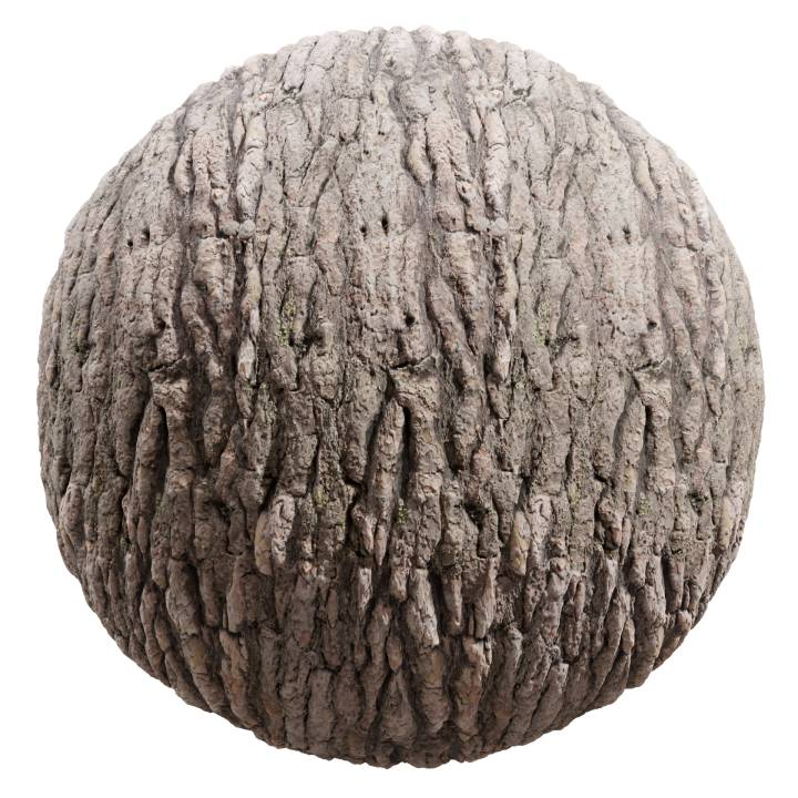 Preview render of the PBR texture Bark 08